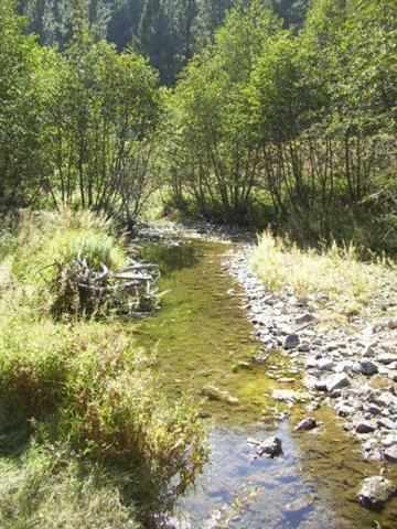 15.08 acres in Wolf Creek, Montana