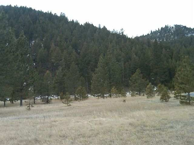 20.02 acres in Lolo, Montana