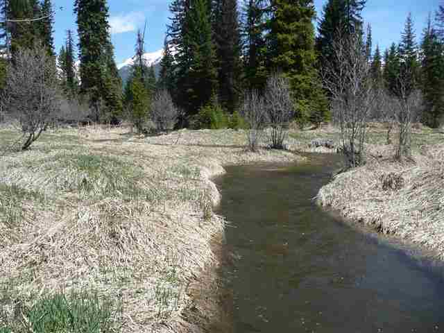15.1 acres in Condon, Montana