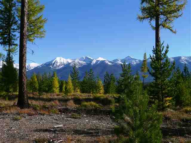 265 acres in Swan Valley, Montana