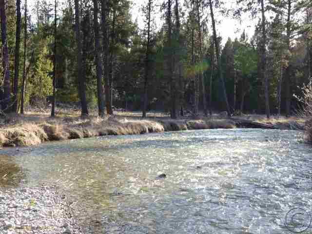 41.28 acres Darby, MT