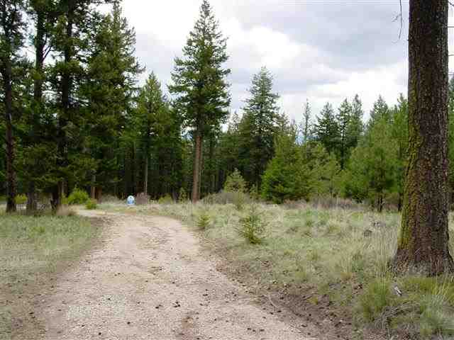 4.63 acres in Lolo, Montana