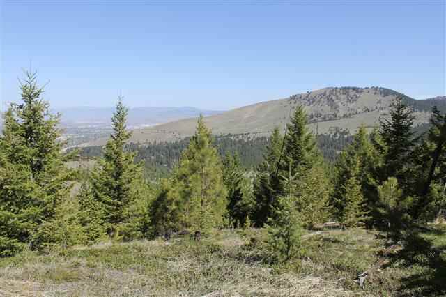 4 acres in Missoula, Montana