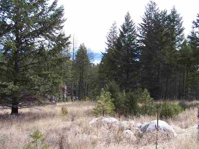 169 Wulff Ln, Lakeside, MT 59922