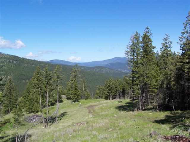 317 Elk Ranch Rd, Kila, MT 59920