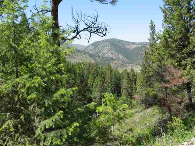 9.62 acres in Lolo, Montana