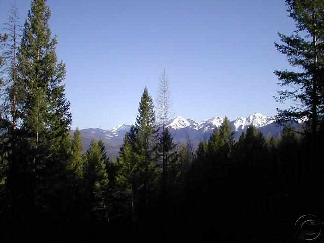 5.5 acres by Seeley Lake, Montana for sale