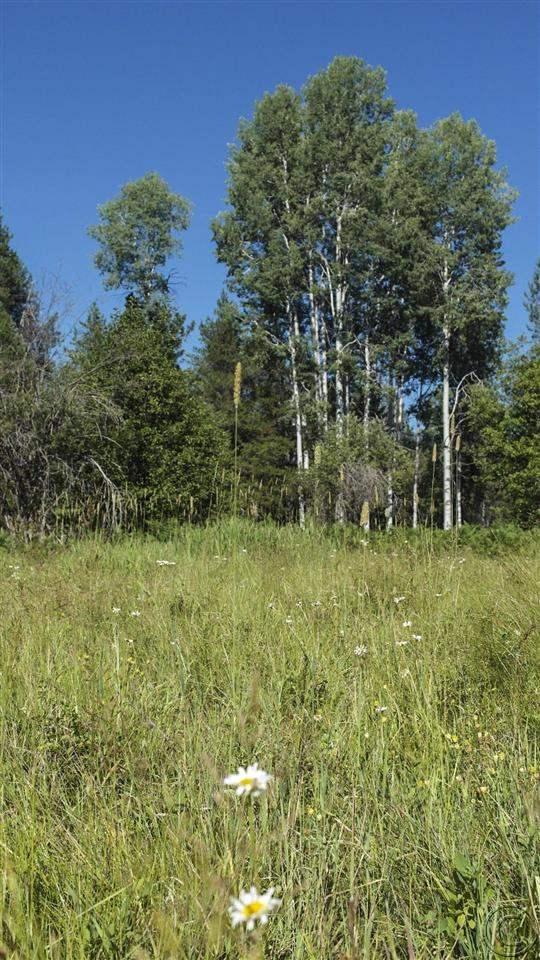 23.45 acres Trout Creek, MT