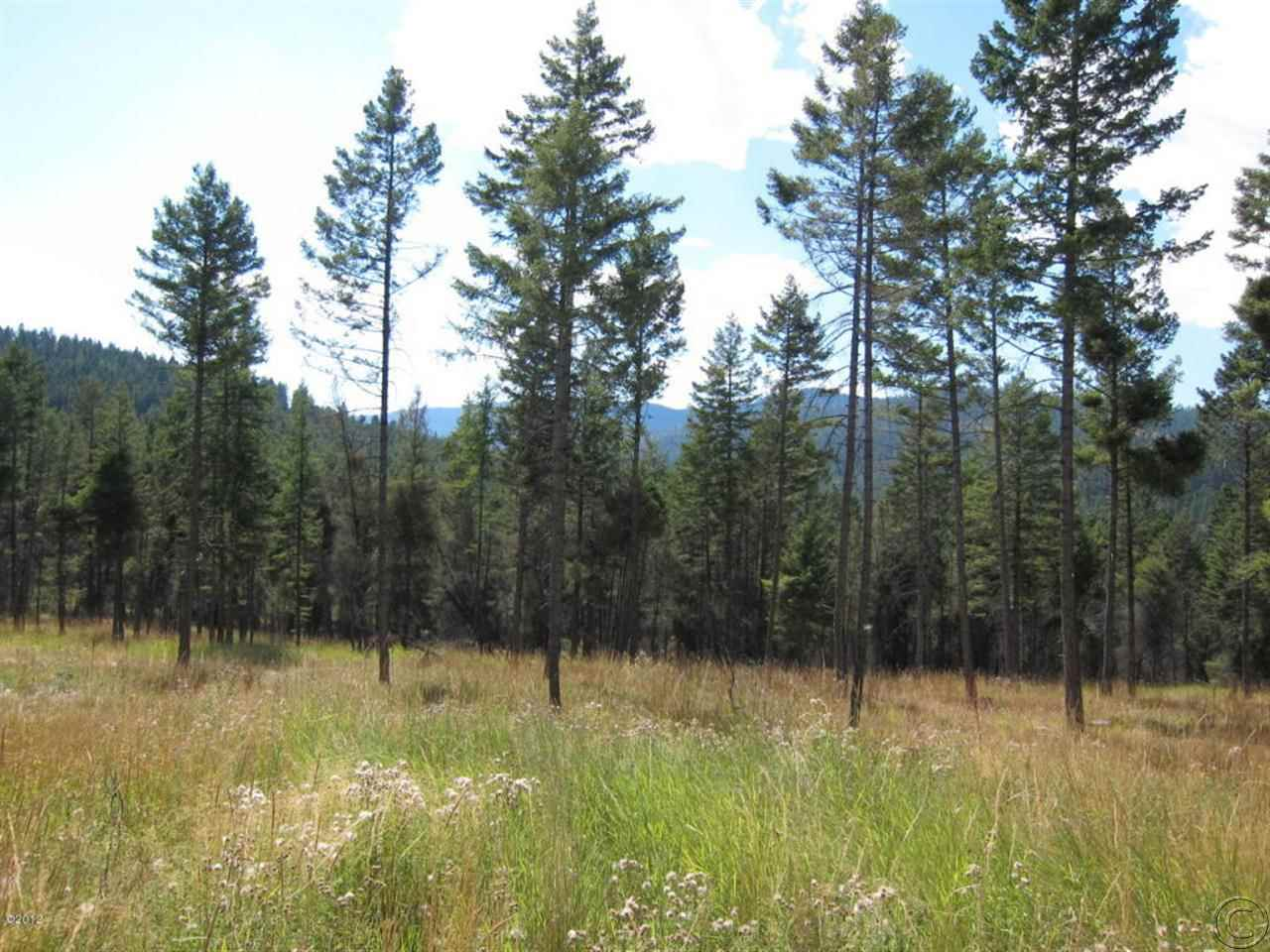 21.01 acres in Somers, Montana