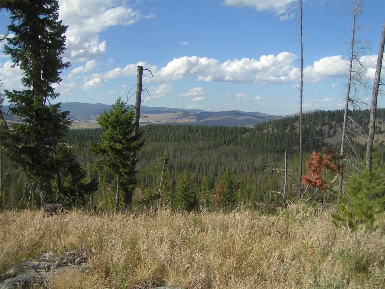 40 acres in Philipsburg, Montana