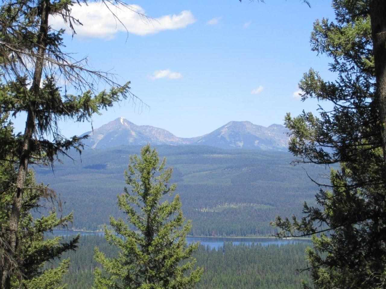 20.01 acres Seeley Lake, MT