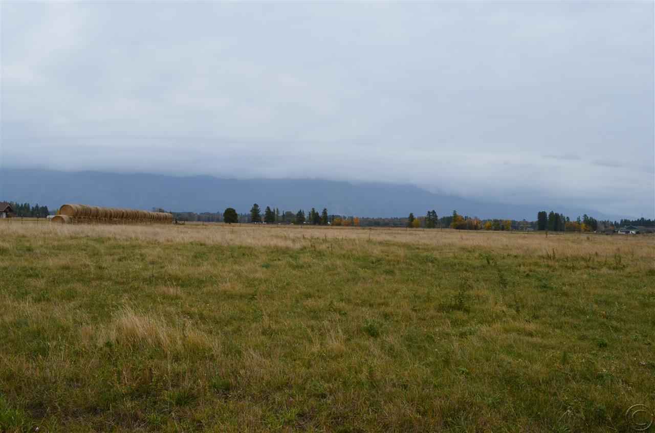 Real Estate for Sale, ListingId: 25560280, Kalispell,MT59901