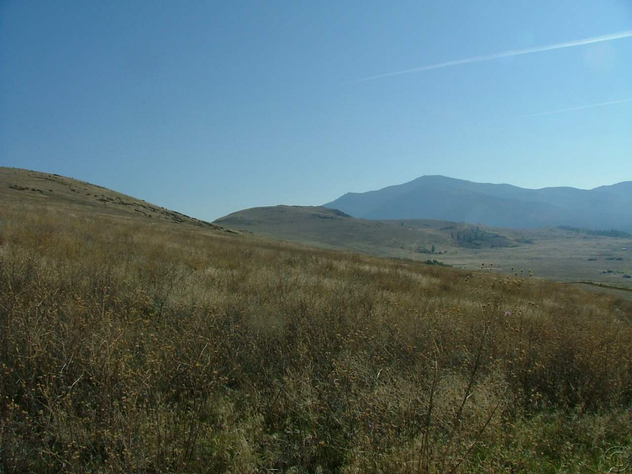 33.63 acres in Plains, Montana