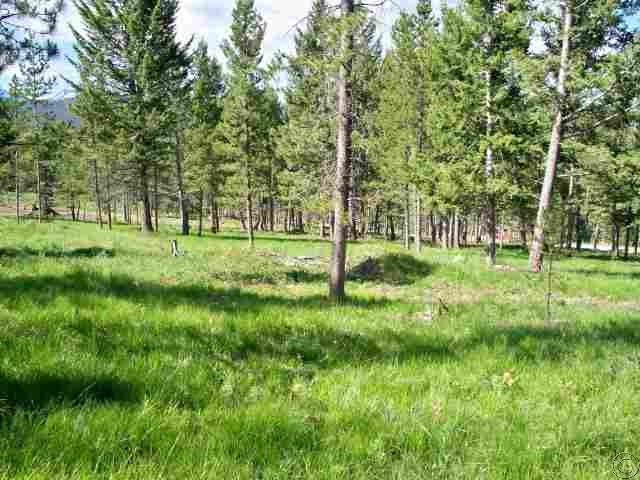 4.8 acres in Georgetown, Montana
