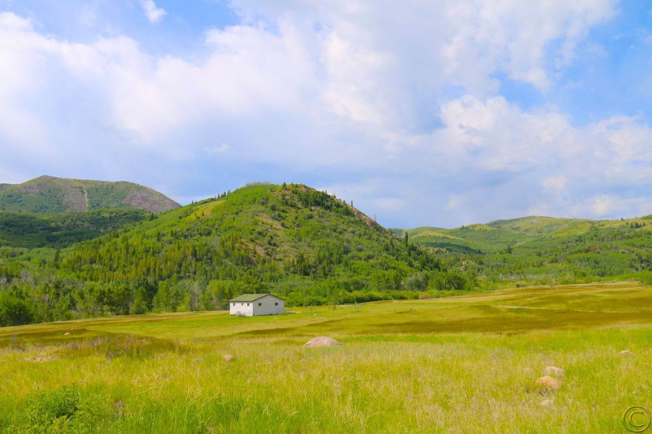 295 Beaver Pond Trl, Anaconda, MT 59711