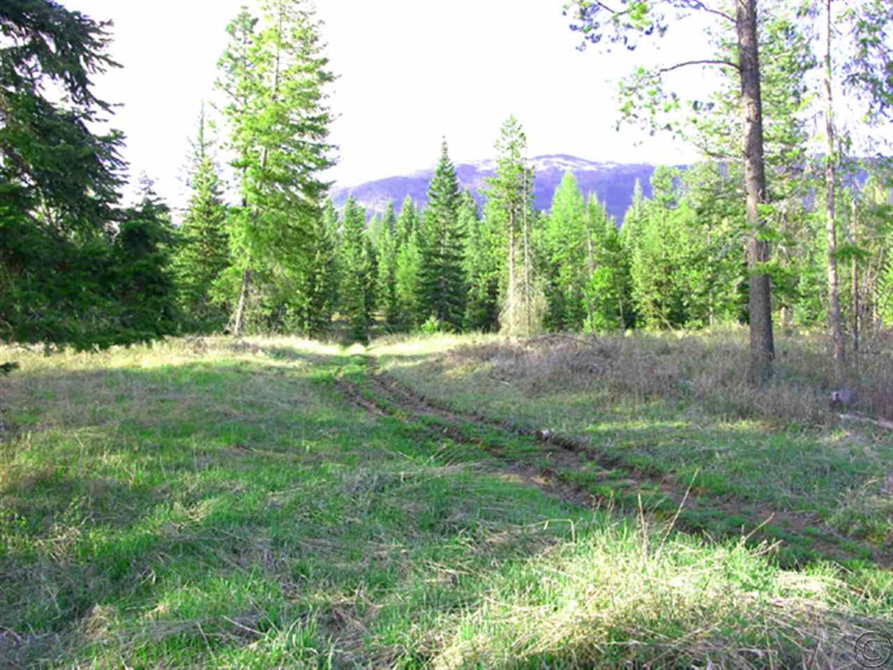10 acres in Trout Creek, Montana