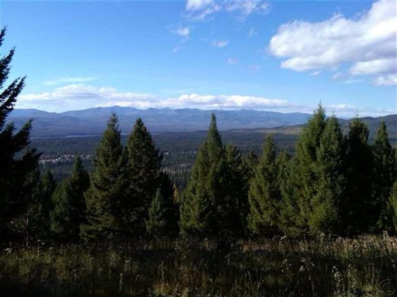 453 Summit Dr, Seeley Lake, MT 59868