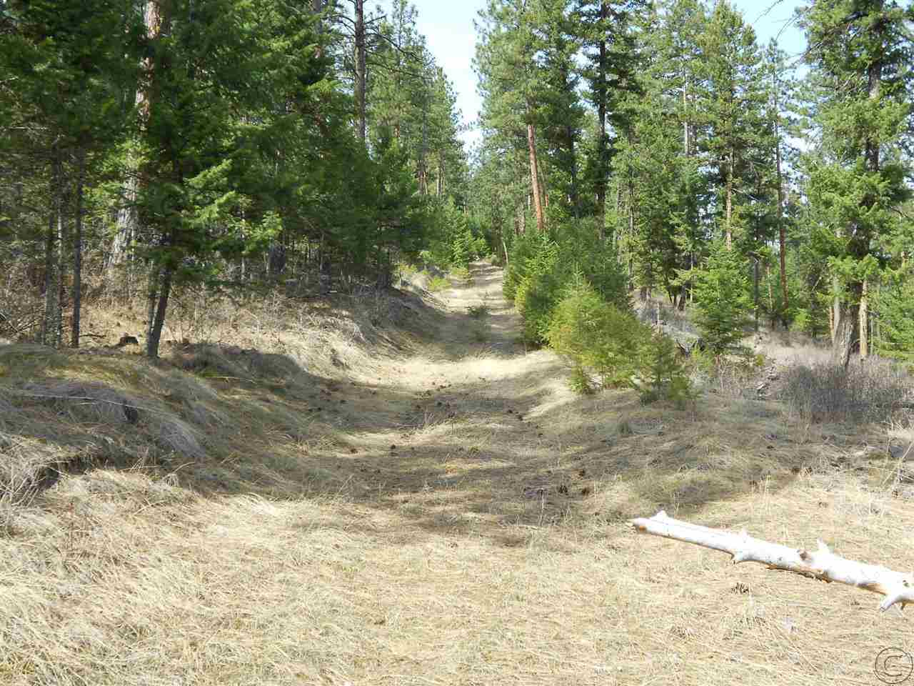 7 Tall Pines Ln, Anaconda, MT 59711