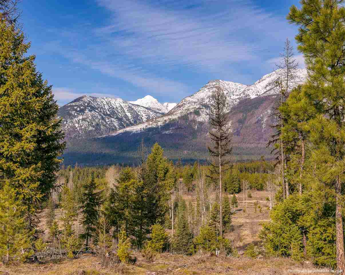 36.29 acres in Condon, Montana
