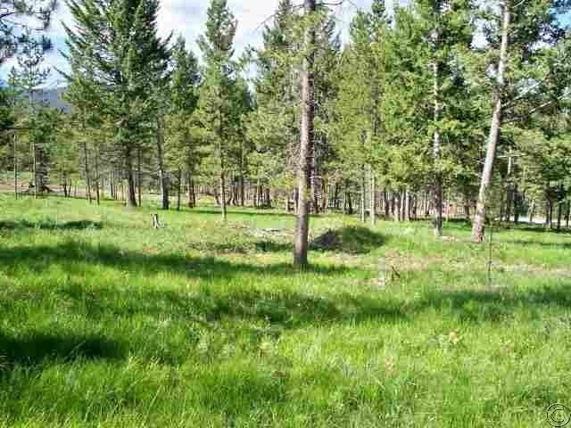 Elk Meadows Ln, Georgetown, MT 59711