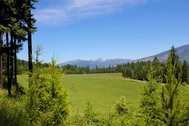 74.98 acres Trout Creek, MT