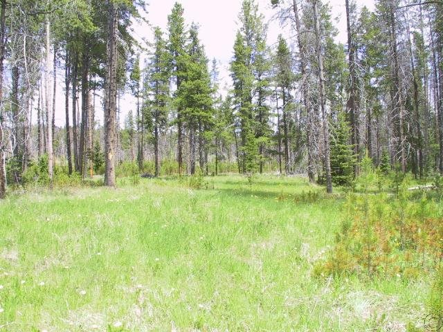 3.99 acres Georgetown, MT