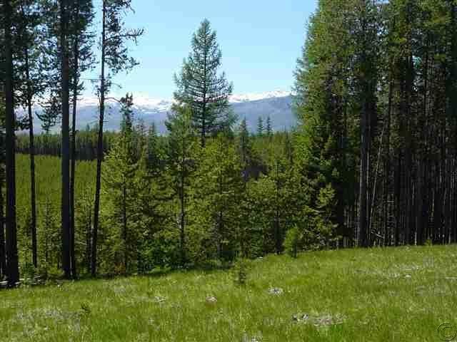 68.76 acres Swan Valley, MT