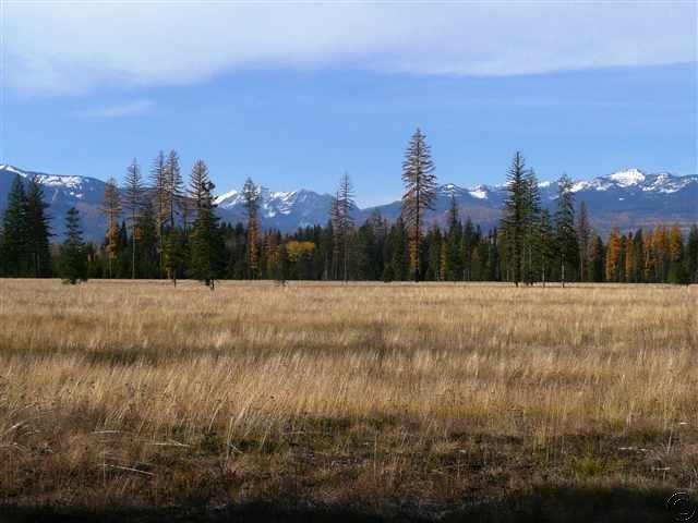 1.24 acres Swan Valley, MT
