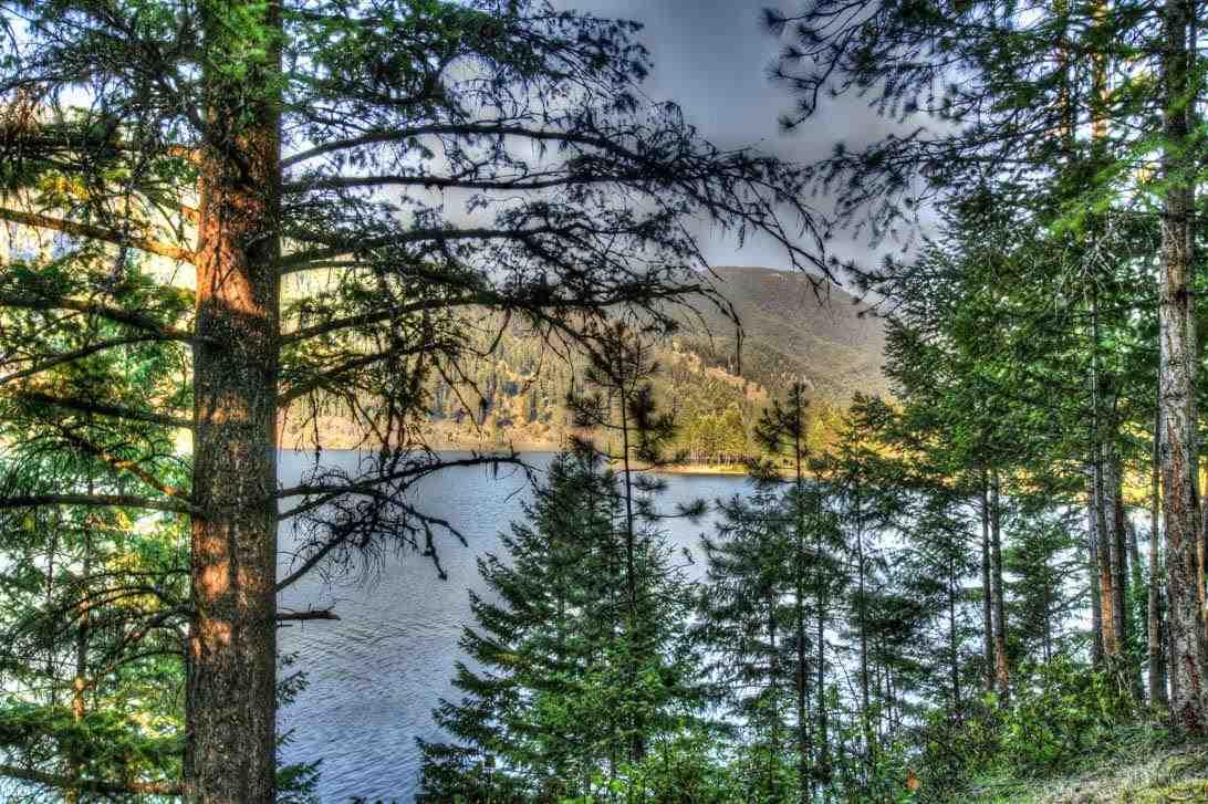0.65 acres Trout Creek, MT