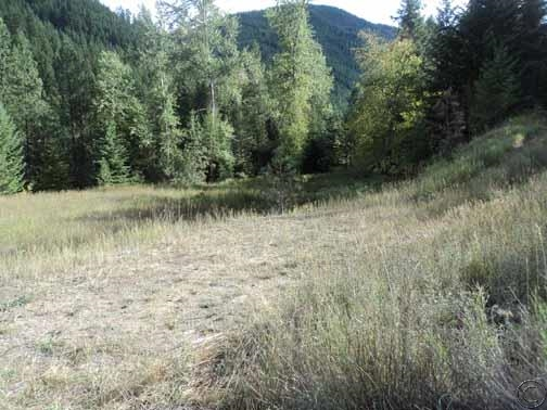 28.72 acres Saint Regis, MT