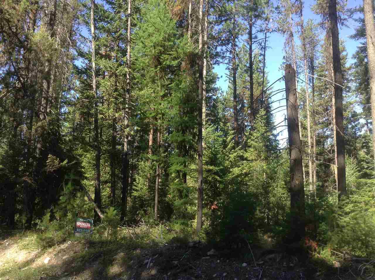 117 Twelvemile Creek Rd, St Regis, MT 59866