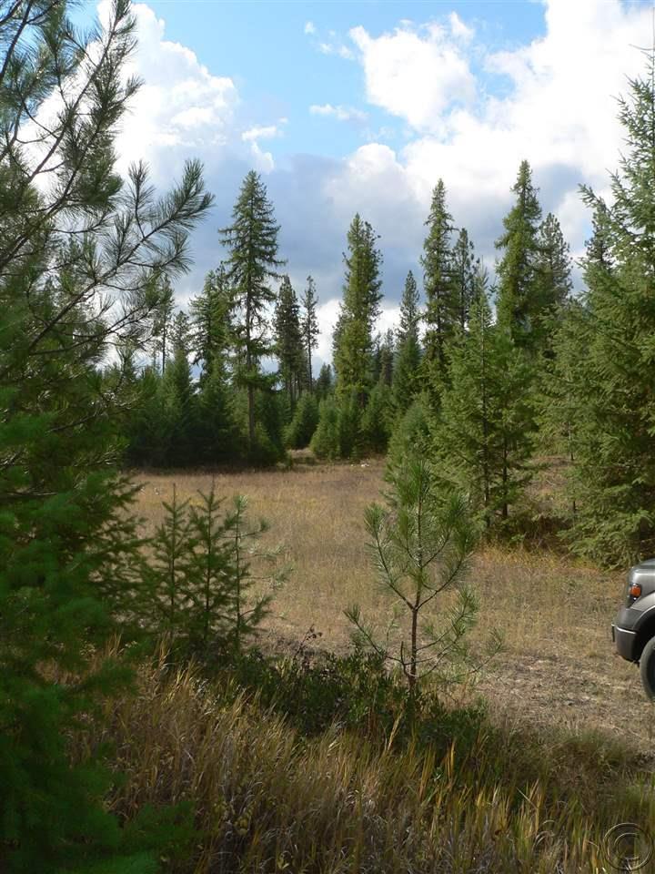 236 acres Superior, MT