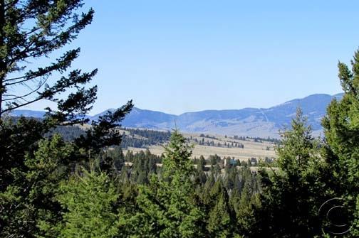 Real Estate for Sale, ListingId: 32602665, Gold Creek,MT59733