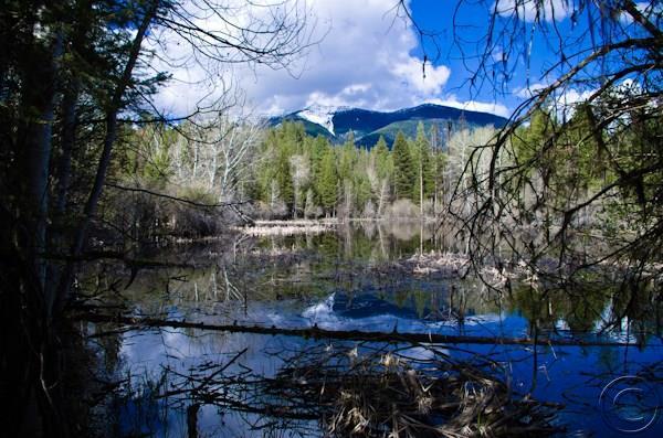 Real Estate for Sale, ListingId: 33015602, Seeley Lake,MT59868