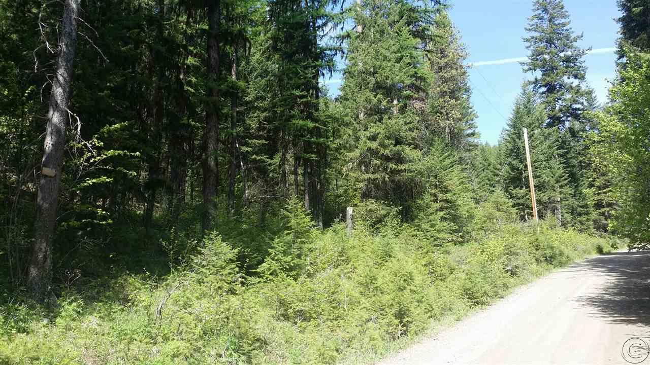 135 W Mountain Creek Rd, Alberton, MT 59820