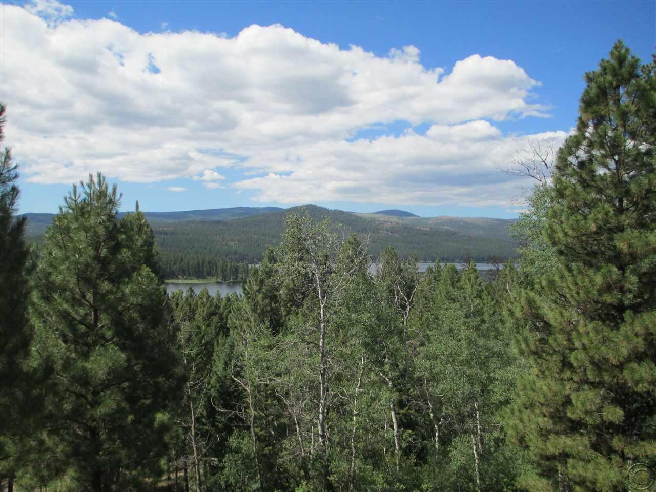 446 Rusty Axe Ln, Seeley Lake, MT 59868