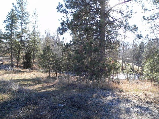 Real Estate for Sale, ListingId: 34058302, Arlee, MT  59821