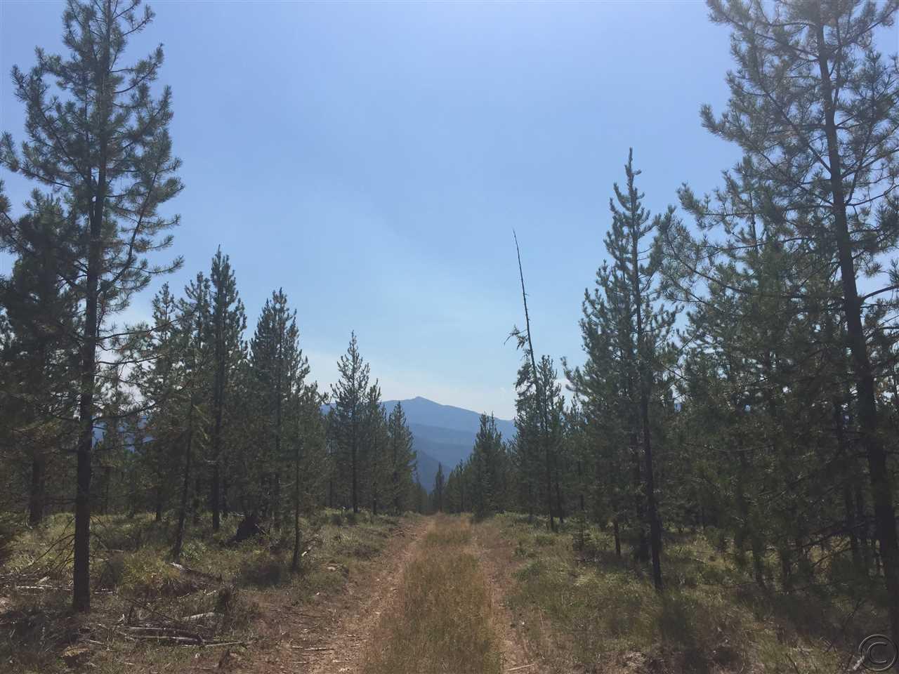 95.53 acres De Borgia, MT