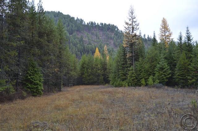 31.87 acres Thompson Falls, MT