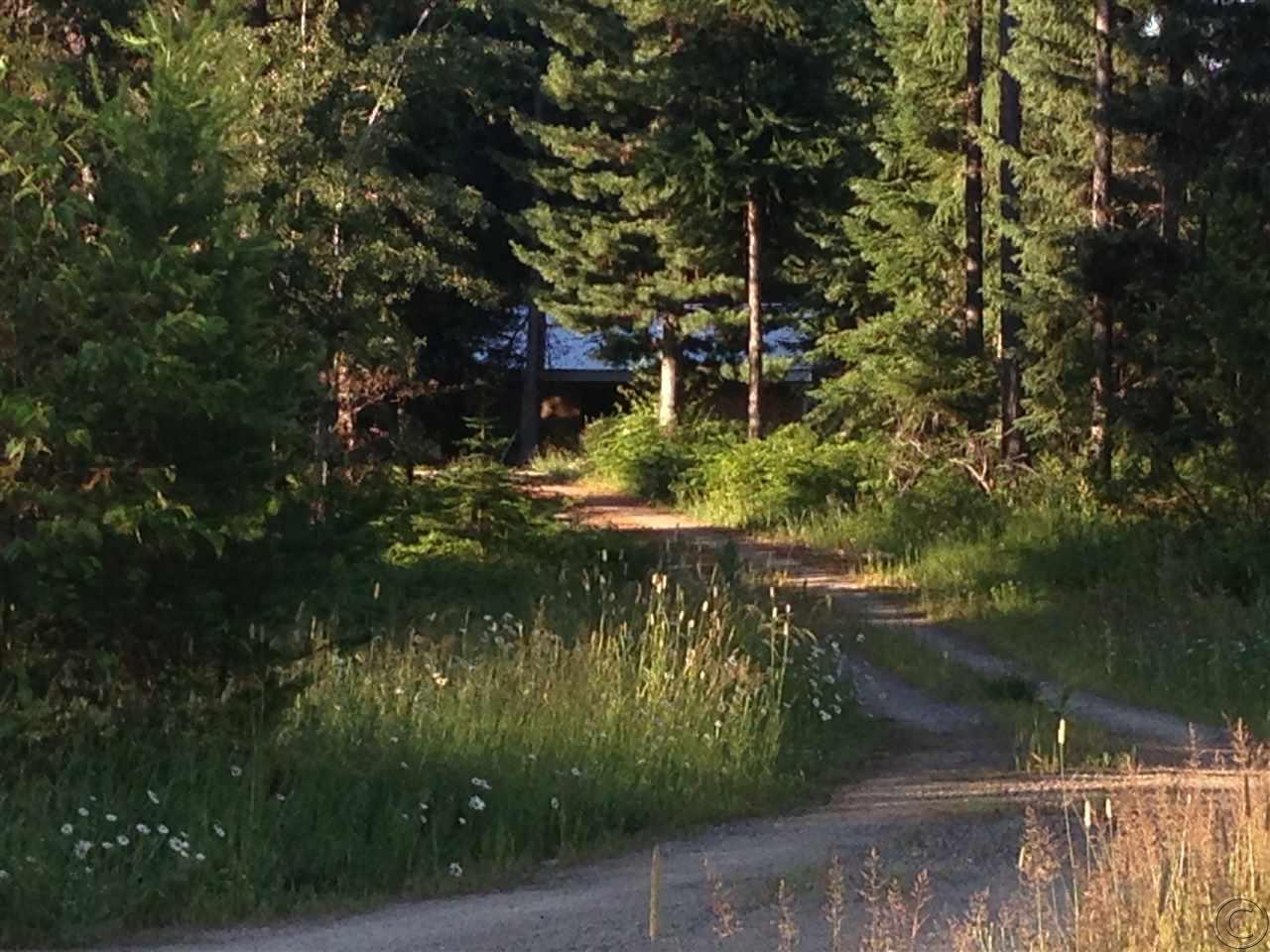 151 Twin Creek Dr, Troy, MT 59935