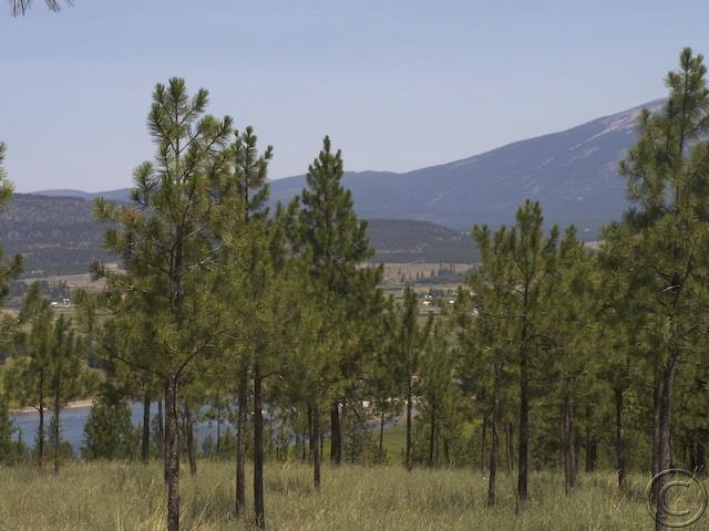 Lot 20 River West Ests # II, Plains, MT 59859
