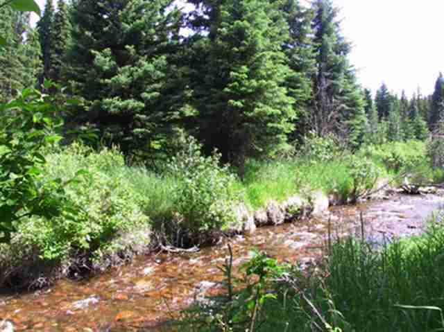 1.99 acres by Seeley Lake, Montana for sale
