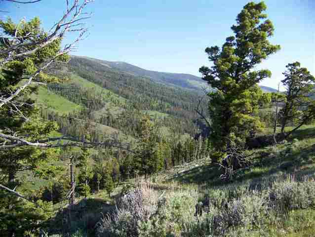 2745 acres in White Sulphur Springs, Montana