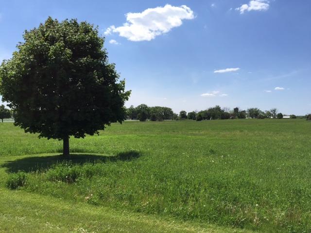 8709 Prairie Field Dr, Union, IL 60180