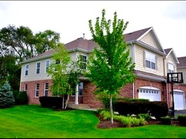 Photo of 523 BOBBY ANN Court  ROSELLE  IL
