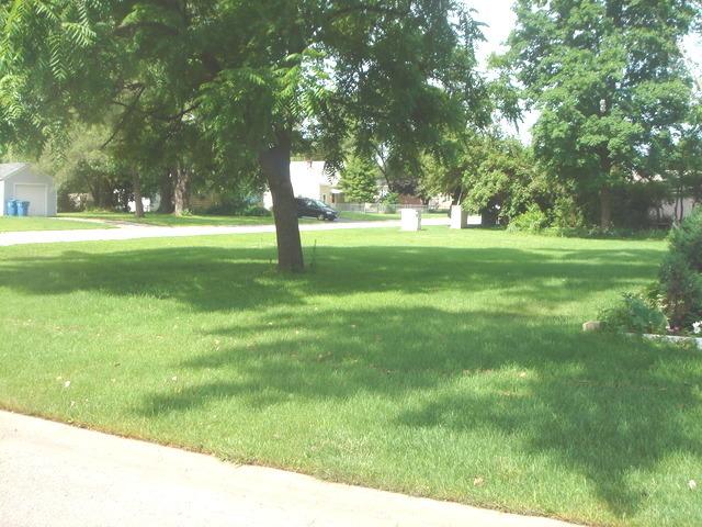 6N164 Spruce Avenue BENSENVILLE, IL 60106
