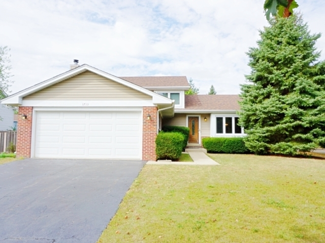 Photo of 1713 Maroon Bells Lane  BOLINGBROOK  IL