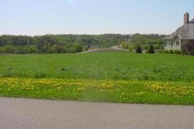 4205 FARMINGTON Lane JOHNSBURG, IL 60050