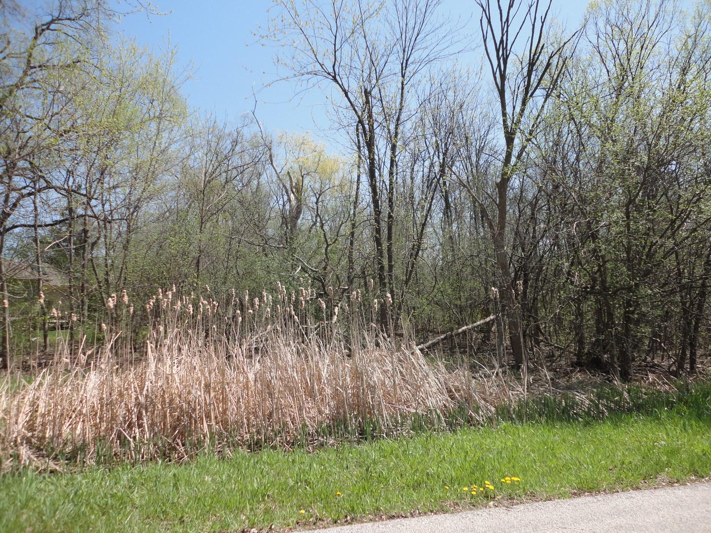 3N615 Oak Lane Drive BENSENVILLE, IL 60106