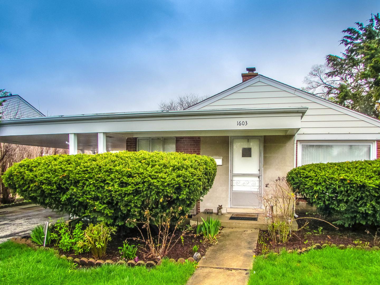 1603 South CUMBERLAND Avenue, Park Ridge, Illinois